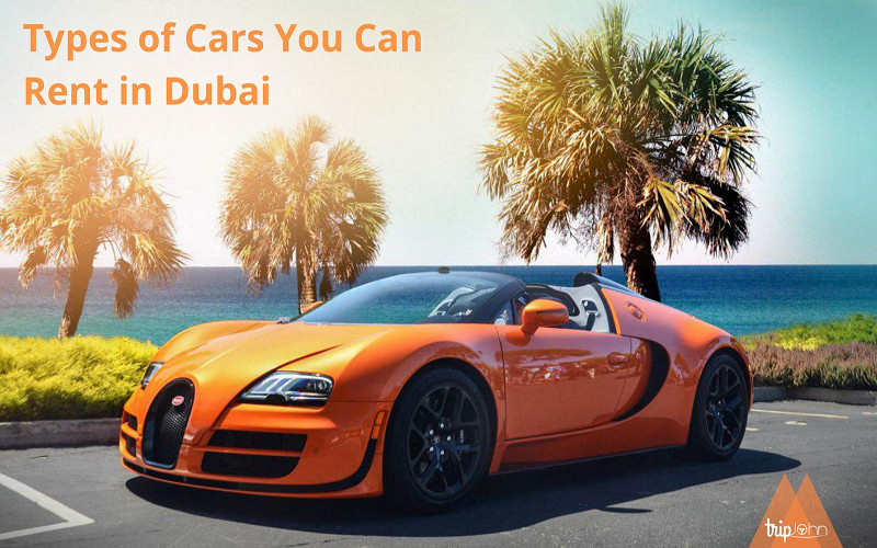 Car types to rent in Dubai